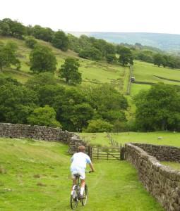 Descending towards Daleside Road