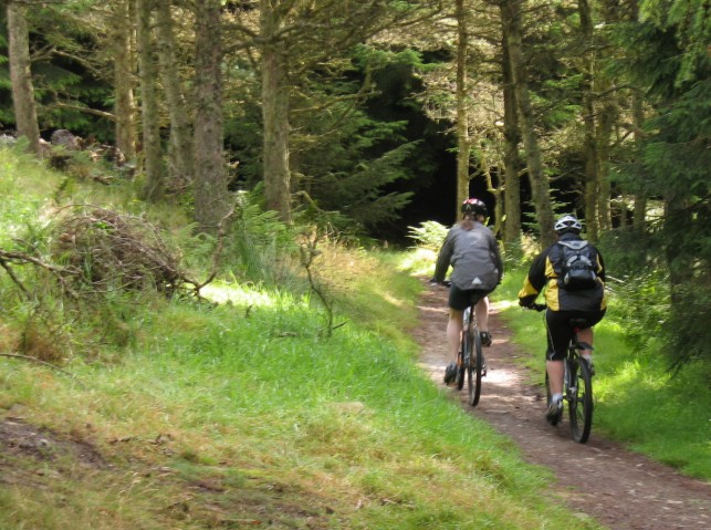 Mountain bikers in Glentress