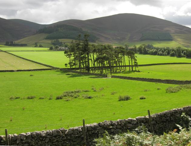 View across Glensax Burn valley
