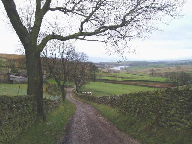 Bordleydale - towards Winterburn Reservoir