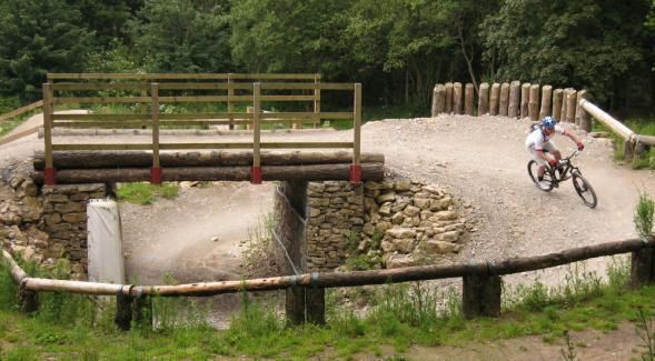 Bridge and berm in Dixon's Hollow