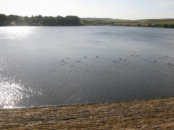 Ingbirchworth Reservoir